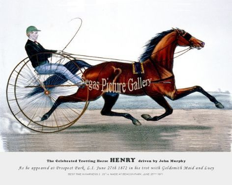 Fine art Horseracing Print of the 1800's Racing and Trotting of The Celebrated Trotting Horse Henry as he appeared at Prospect Park, L.I. June 27th 1872 in his trot with Goldsmith Maid and Lucy
